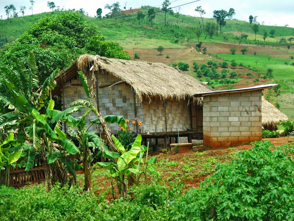 A typical Lahu hill tribe house