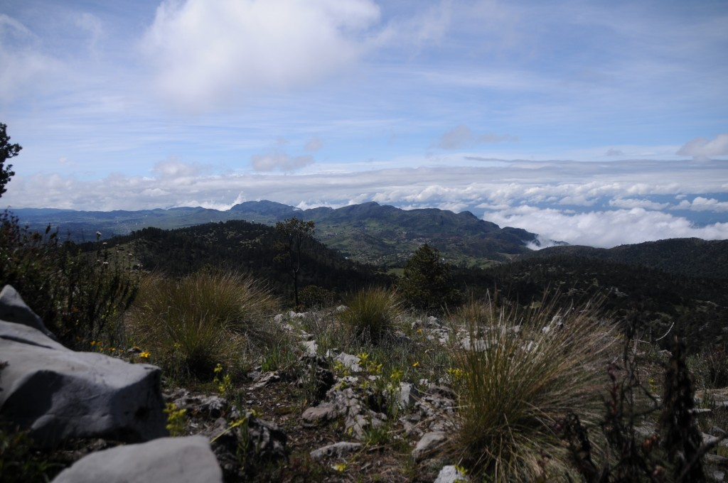 The view from La Torre, the highest non-volcanic point in Central America.