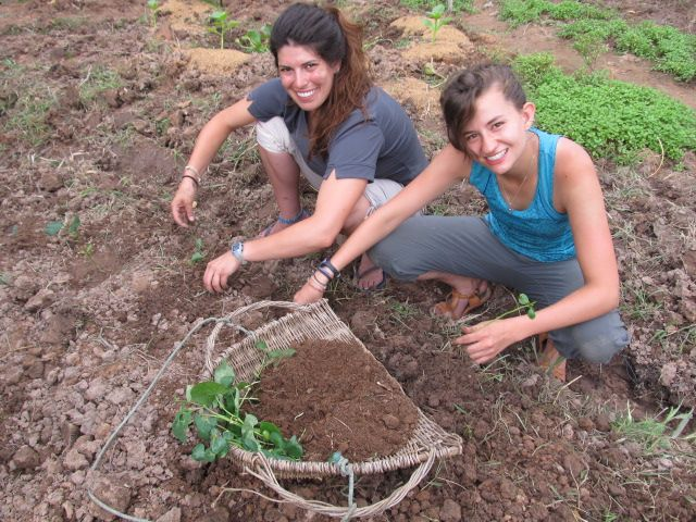 Permaculture in Cambodia