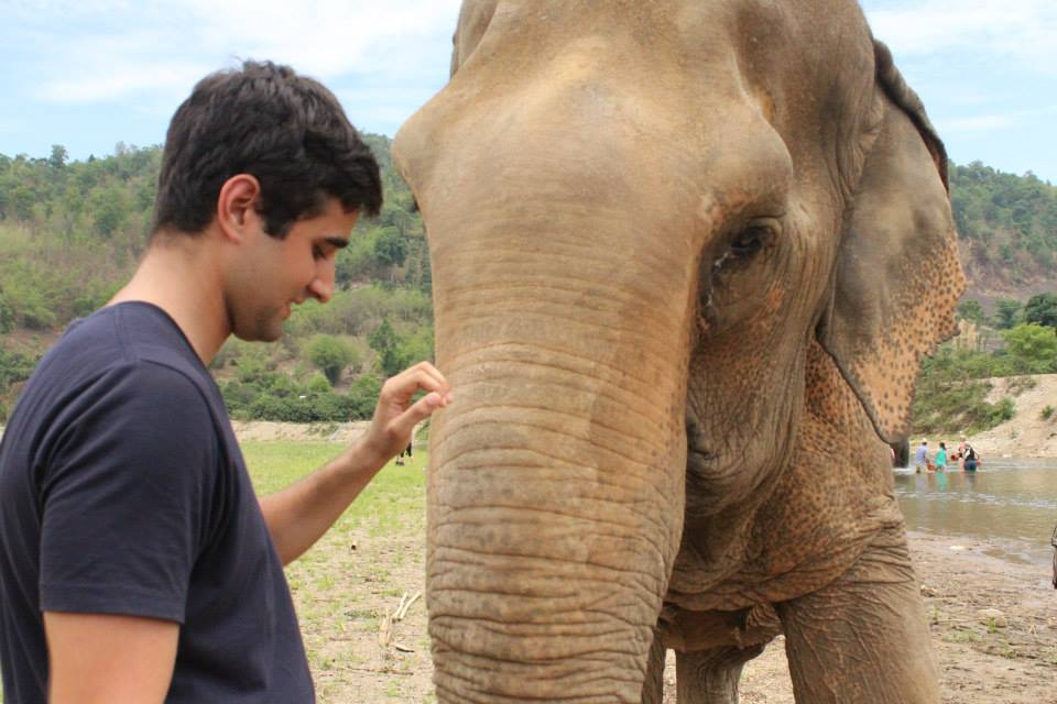 Sid and the Elephant