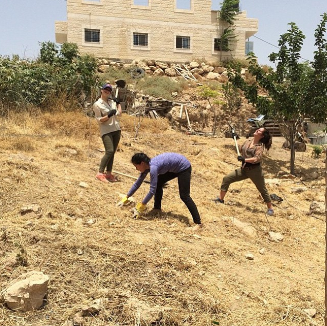 Cleaning up at the Bedouin Summer Camp