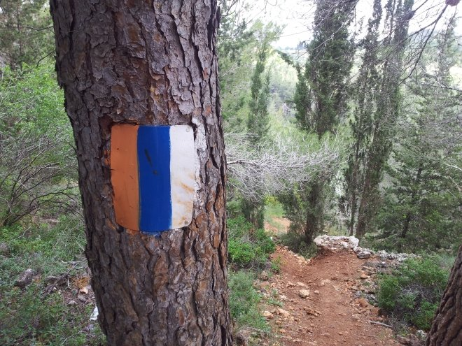 A trail marker