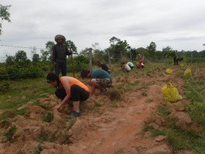 Planting Away